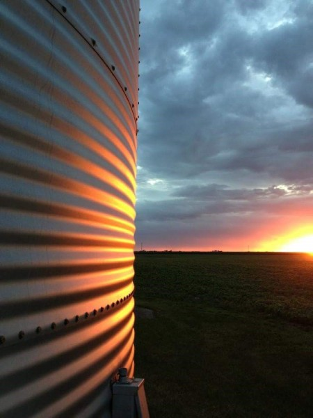 A grain bin reflecting the colors of sunset
