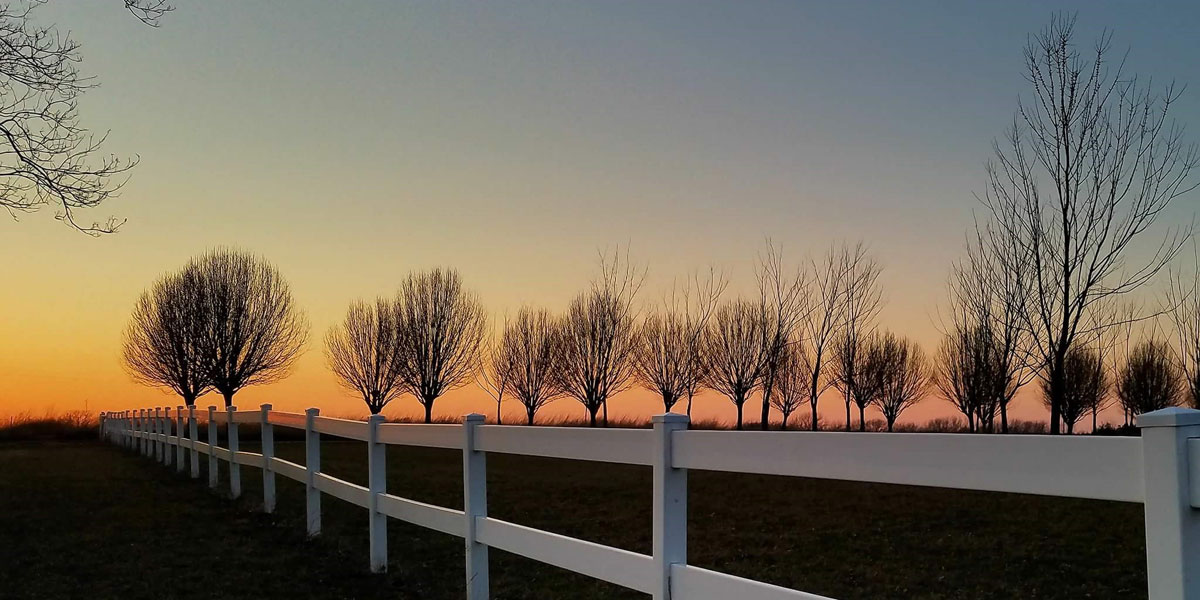 A white fence with a silhouette of trees at sunrise